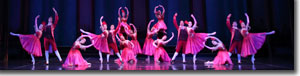 The palace ball: Artists of the Colorado Ballet